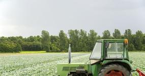 Rolnicy będą sprzedawać więcej produktów rolnych bez podatku