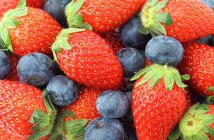 Opodatkowanie sprzedaży owoców i runa leśnego