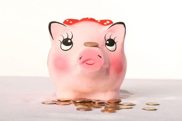 Ile trzeba zapłacić za skargę na działania organów podatkowych?