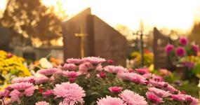 Sprzedaż zniczy i kwiatów z okazji święta 1 listopada. Czy konieczna jest zapłata podatku?