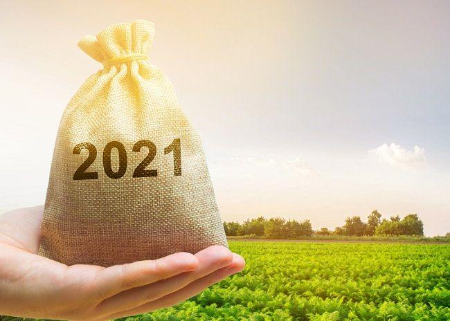 podatek leśny i rolny za 2021 r.