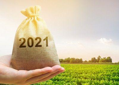 Podatek rolny i leśny, termin zapłaty upływa 15 marca