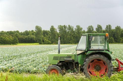 Normy szacunkowe działów specjalnych produkcji rolnej 2019