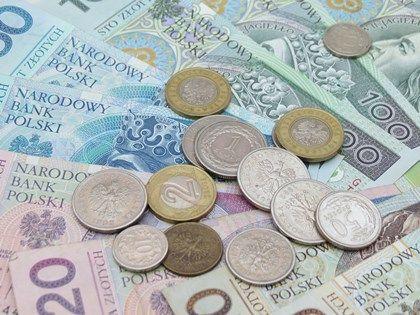 Wysoka płaca minimalna zagraża mikroprzedsiębiorstwom