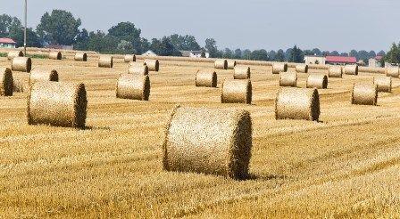 Opodatkowanie gruntów rolnych - zmiana przepisów