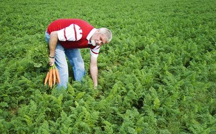 Zmiany w ubezpieczeniu rolników?